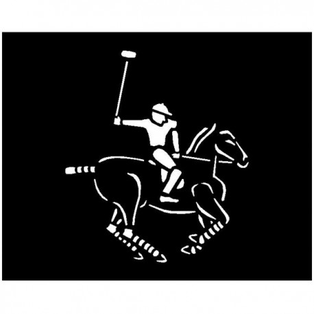 Paint Polo Horse and Rider