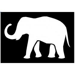 Brushing Elephant