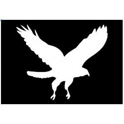 Brushing Flying Eagle