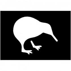 Brushing Kiwi