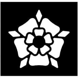 Brushing Tudor Rose